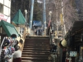 milana-dombai_0_terr_vantovy-most-ryadom